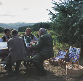 shooting_picnic